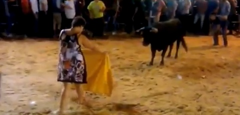 Drunk Woman Takes On Bull